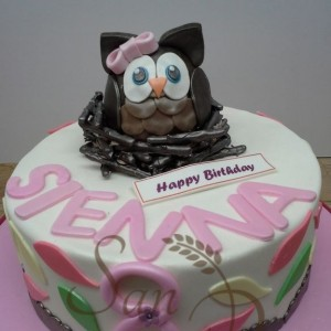 One TIer Owl Cake