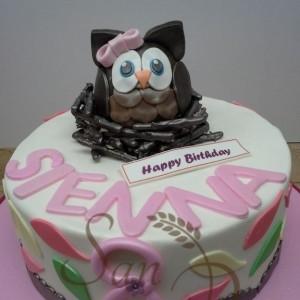 One TIer Owl Cake